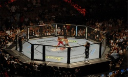 Thumbnail image for ufc.jpg
