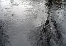 january puddles