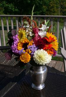 oreshan flowers