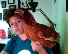 emilys stolen chicken