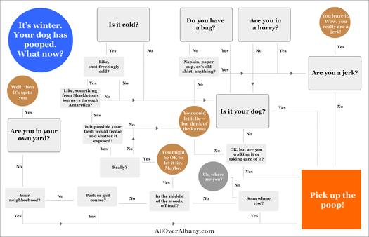 pick up dog poop flow chart