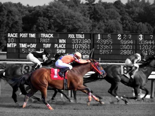 horses running at Saratoga