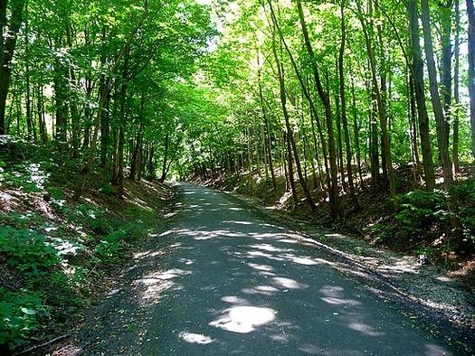 colonie bike path