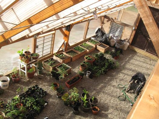 radix center greenhouse