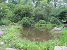 Thumbnail image for Berkshire Garden -Pond.jpg
