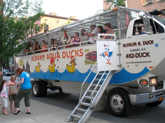albany aqua duck wide shot