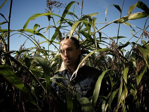 tim hecker corn field