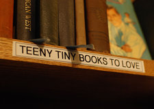 northshire bookstore manchester tiny books