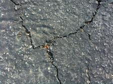 cracked driveway pavement