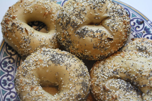 albany bagel everything bagels