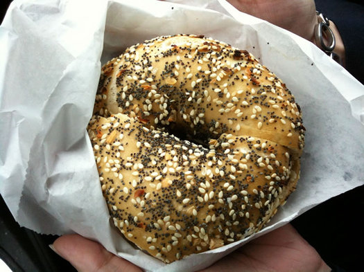 albany bagel co everything bagel