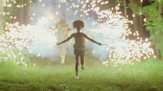 beasts of the southern wild still