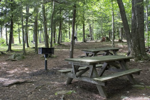 grafton lakes picnic tables
