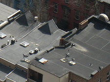 albany rowhouse roofs
