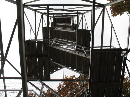 Beebe Hill fire tower looking up