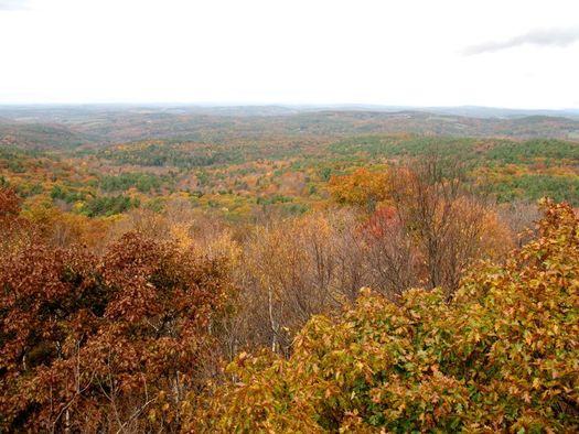 Beebe Hill fire tower view autumn