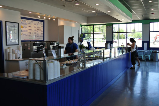 ayelada frozen yogurt latham interior 2015-May