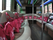 luxury mini bus interior