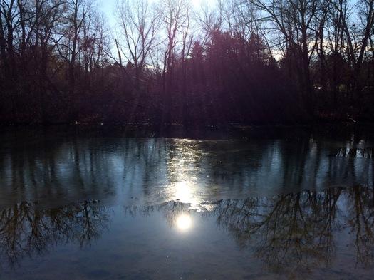 Buckingham Pond 2015-11-24 surface ice