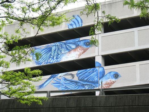 Quackenbush parking garage mural in progress