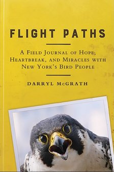flight paths by darryl mcgrath