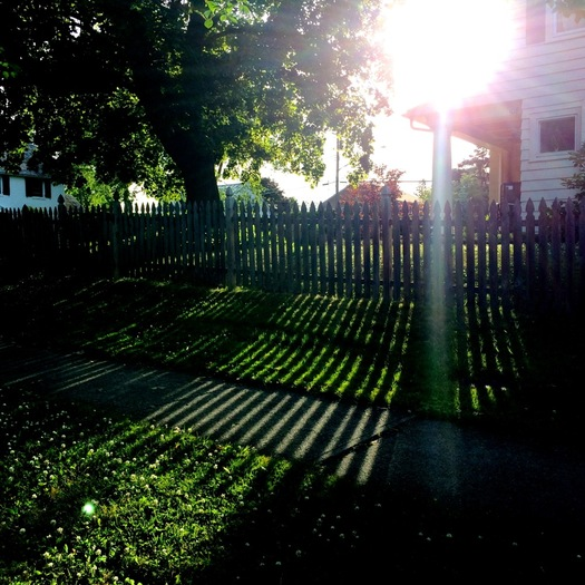 Euclid Ave picket fence sun