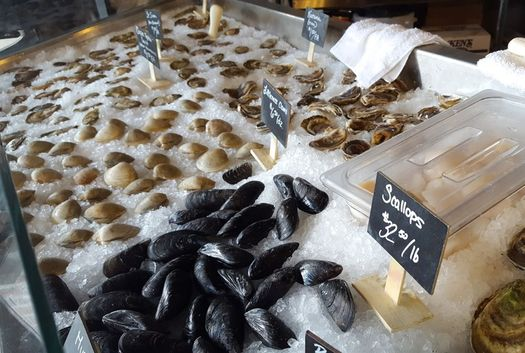 hooked seafood co shellfish