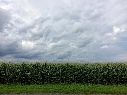 kinderhook cornfield stormy sky