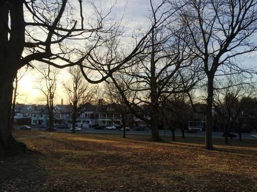 Beman Park Troy sunset 2017-January