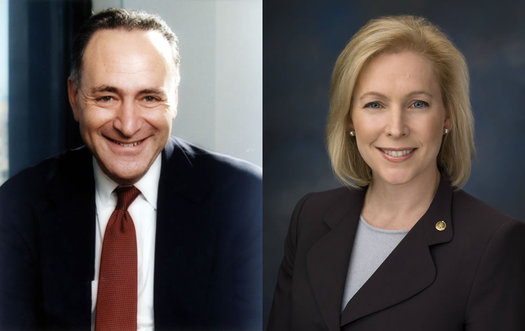 Chuck Schumer and Kirsten Gillibrand composite