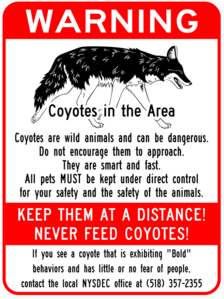 city of albany coyote warning sign
