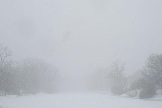 Buckingham Pond blizzard 2017-03-14