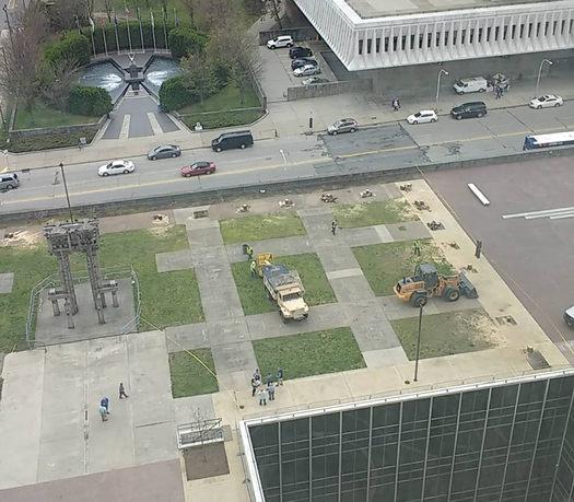 trees cut down ESP labyrinth corner