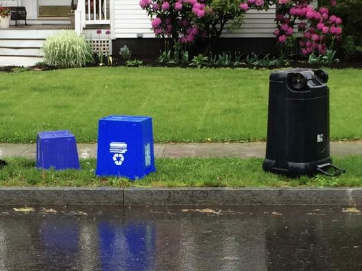 empty trash cans along Albany residential street
