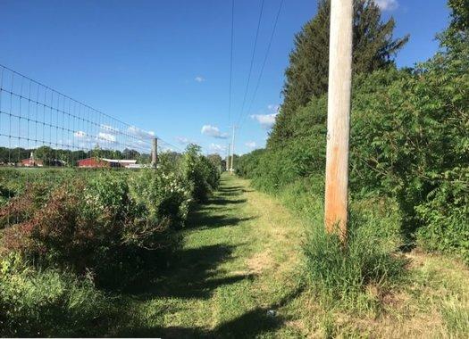 Albany Hudson Electric Trail Kinderhook segment