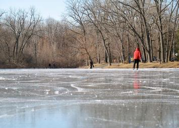 Buckingham Pond ice skater background winter 2010