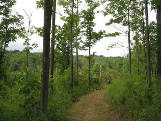 huyck trail