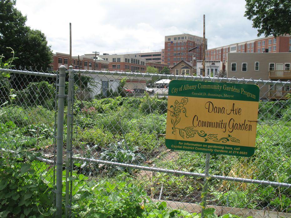 Albany_Med_Park_South_Dana_Ave_garden.jpg