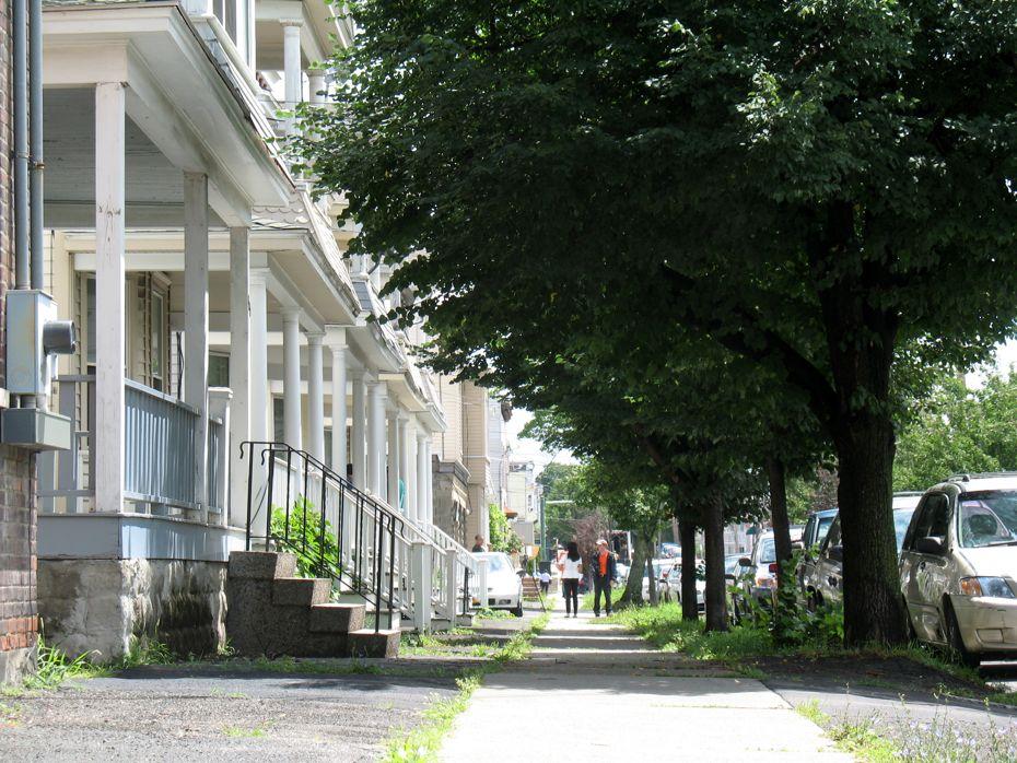 Albany_Med_Park_South_Morris_street.jpg
