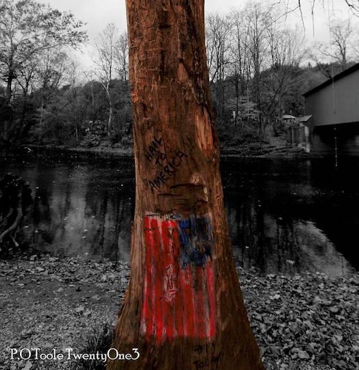 American Totem_PeterO'Toole.jpg