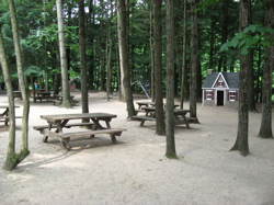 Animal land picnic area.jpg