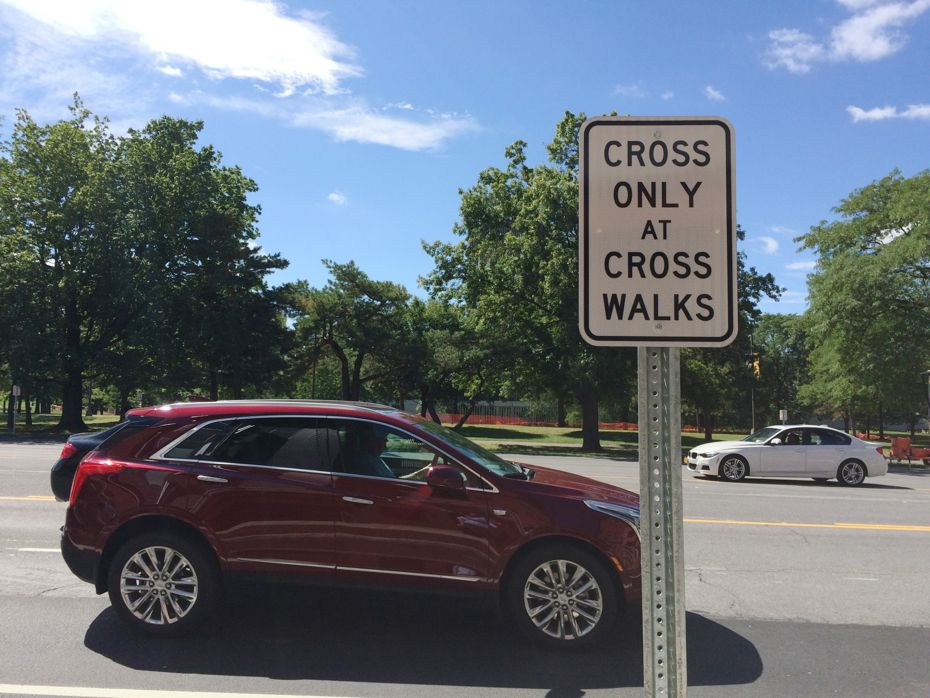 cross only at walks sign