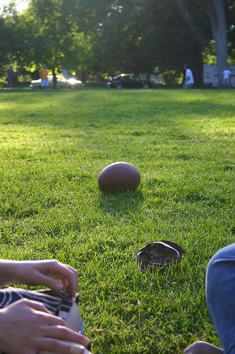 Bennett Park 1.jpg