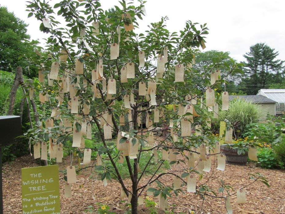 Berkshire Garden Wishing Tree Wide.jpg
