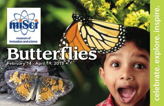 Butterlflies PC front no invite 010215.jpg