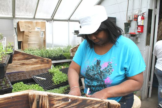Horticulture Center Job Training