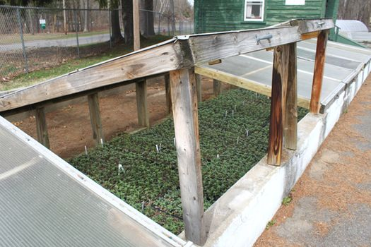 Horticulture Center Raised Bed Cover