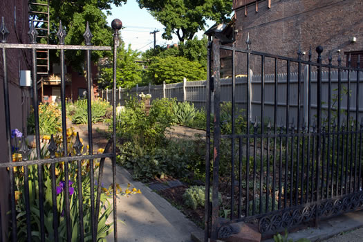Emily_Menn_Troy_urban_garden_gate_looking_in.jpg