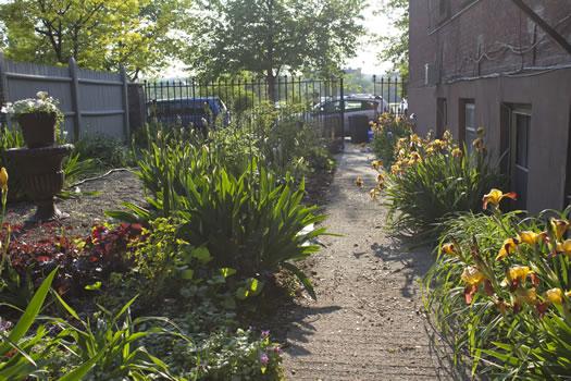 Emily_Menn_Troy_urban_garden_walkway.jpg