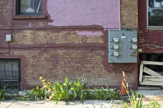 Emily_Menn_Troy_urban_garden_wall.jpg